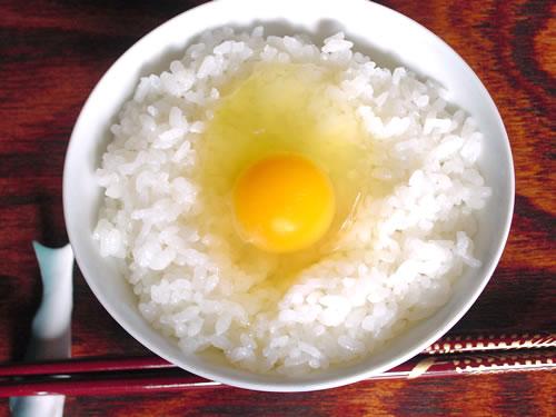 egg004