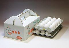 egg005