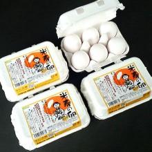 egg013